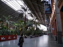 アトーチャ駅構内の植物園