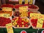 多種類のトマトたち