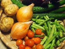 野菜の保存