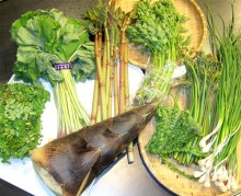 山菜・タケノコ、食卓は頂きモノ満載で…